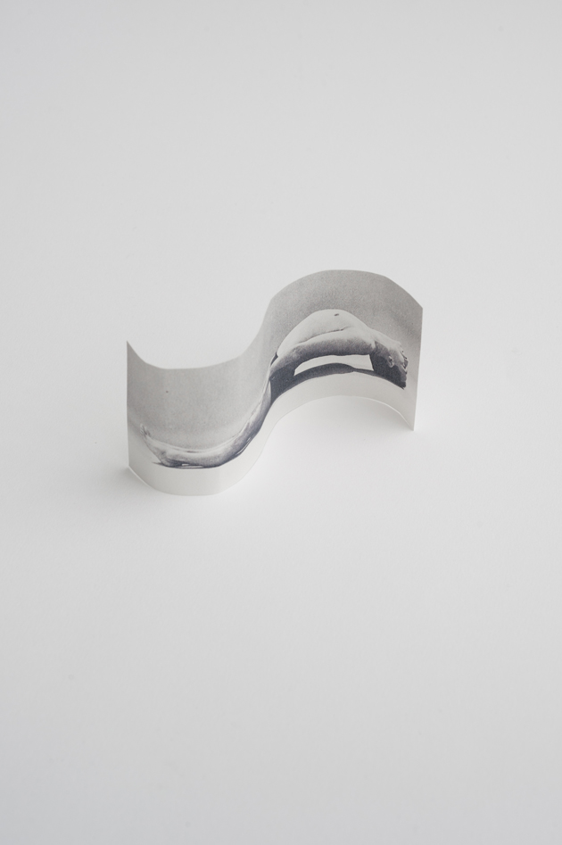 photosculptures4